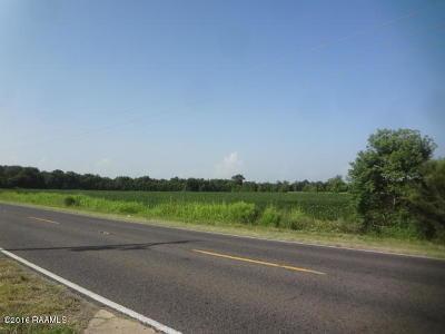 Evangeline Parish Farm For Sale: Tbd Hwy 167