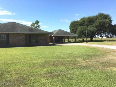 Kaplan Single Family Home For Sale: 20931 W Liberty Farm