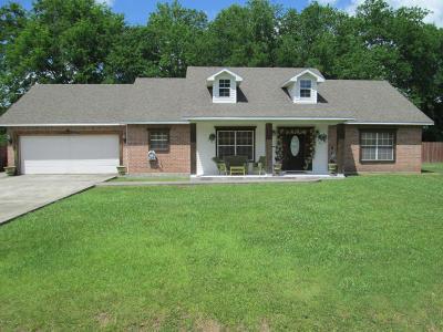 Carencro Single Family Home For Sale: 206 Hesper Drive