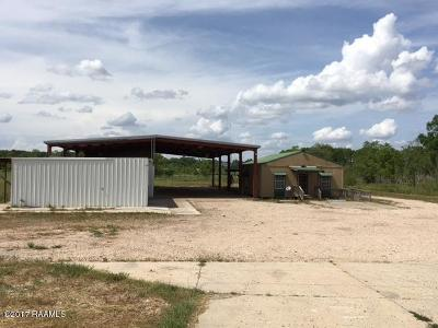 St Landry Parish Commercial For Sale: 16359 Hwy 190