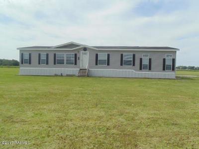 Charenton Single Family Home For Sale: 201 Deslinger Road