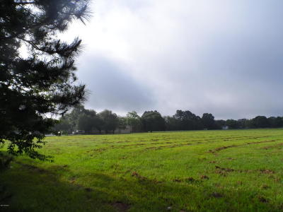 Ville Platte Residential Lots & Land For Sale: Tom Drive/1.89 Acre