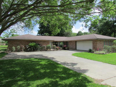 New Iberia Single Family Home For Sale: 3935 Bayou Boulevard