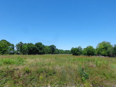 Evangeline Parish Residential Lots & Land For Sale: Tbd Natchitoches Road