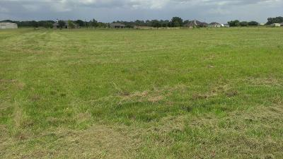 Crowley Farm For Sale: Lot 4 Lovell Street
