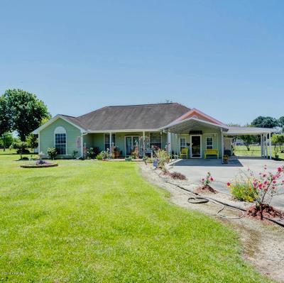 Church Point Single Family Home For Sale: 302 Olivier Road