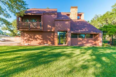 Breaux Bridge Single Family Home For Sale: 237 Aline Drive