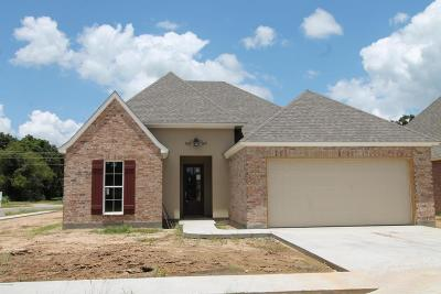 Carencro Single Family Home For Sale: 110 Safe Haven Drive