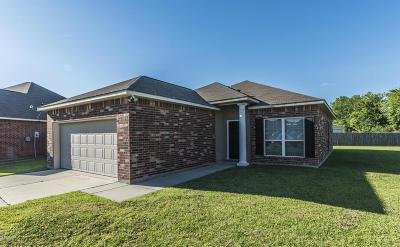 Carencro Single Family Home For Sale: 614 Magnolia Knee Drive