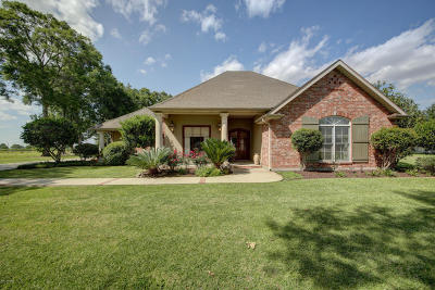 New Iberia Single Family Home For Sale: 419 Lucerne Drive