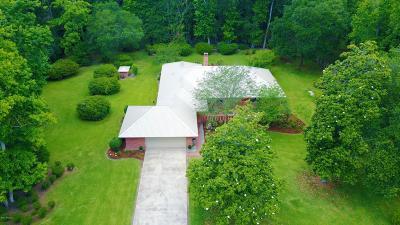 Carencro Single Family Home For Sale: 232 Froeba Drive