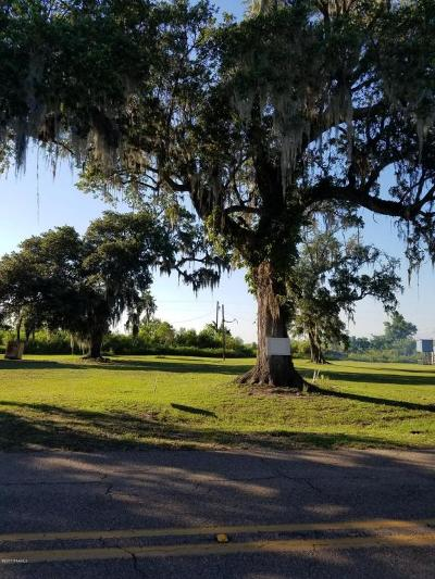 St Mary Parish Residential Lots & Land For Sale: 2246 Hwy 319