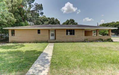 Jeanerette Single Family Home For Sale: 2807 Dalbor Street