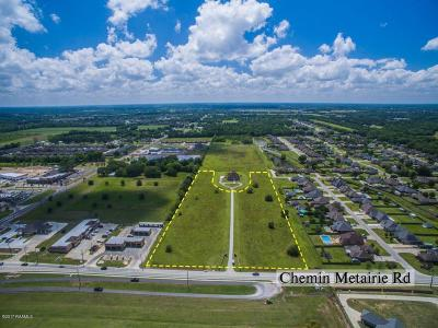 Commercial Lots & Land For Sale: 1500 Blk Chemin Metairie