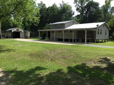 Breaux Bridge Single Family Home For Sale: 2190 Atchafalaya River Hwy