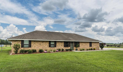 St Martinville, Breaux Bridge, Opelousas Single Family Home For Sale: 117 Dufilho Road