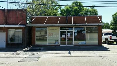 Evangeline Parish Commercial For Sale: 119 S Coriel Street