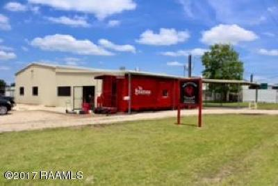 Commercial For Sale: 236 Burgess