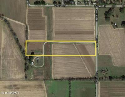 Commercial Lots & Land For Sale: 235 Viaulet Road
