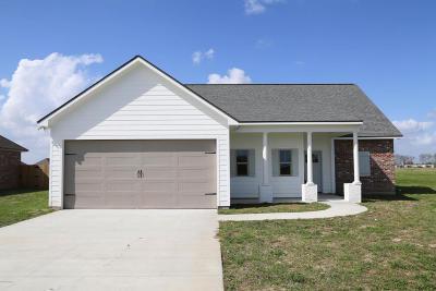 Breaux Bridge Single Family Home For Sale: 1252 Delcambre Road
