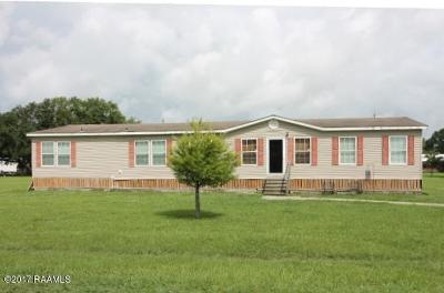 Arnaudville Single Family Home For Sale: 1018 Olivier Road