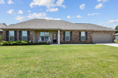 Carencro Single Family Home For Sale: 414 Magnolia Knee Drive