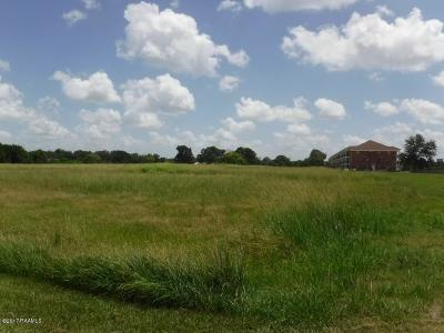Acadia Parish Residential Lots & Land For Sale: 1300 Church Point Highway