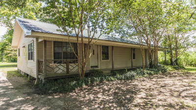 Church Point Single Family Home For Sale: 459 Iseringhausen Road