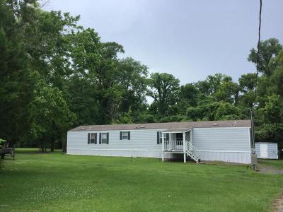 Breaux Bridge Single Family Home For Sale: 2802 Atchafalaya River