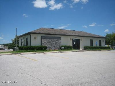 Commercial For Sale: 2635 Veterans Memorial Drive