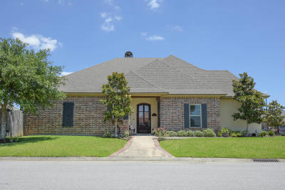 Copper Meadows Single Family Home For Sale: 110 Brookfield Drive