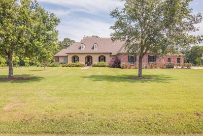 St Martinville, Breaux Bridge, Opelousas Single Family Home For Sale: 366 Rodeo Drive