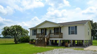 Arnaudville Single Family Home For Sale: 1421 Hwy 741