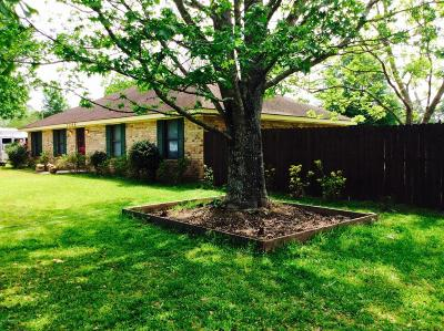 St. Martinville Single Family Home For Sale: 1066 Lady Of The Lake Road