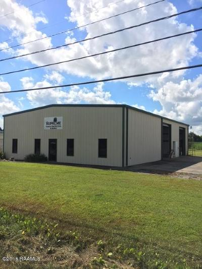 New Iberia Commercial For Sale: 1609 Jefferson Island Road