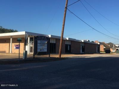 Commercial For Sale: 302-B N Hospital Drive