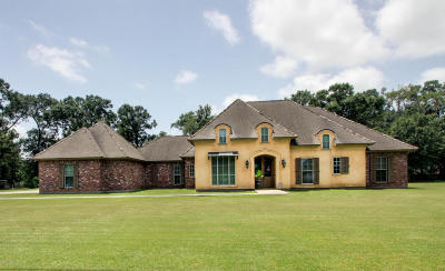 New Iberia Single Family Home For Sale: 210 Lucerne