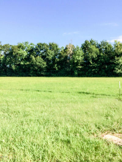 Cankton Residential Lots & Land For Sale: 100 Noahs Ark Boulevard