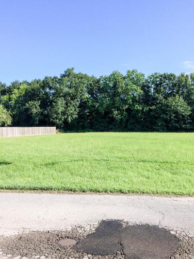 Cankton Residential Lots & Land For Sale: 102 Noahs Ark Boulevard
