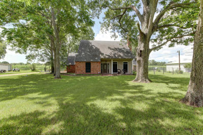 St. Martinville Single Family Home For Sale: 1097 Lady Of The Lake Road