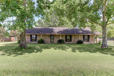 Carencro Single Family Home For Sale: 211 Dayna Drive