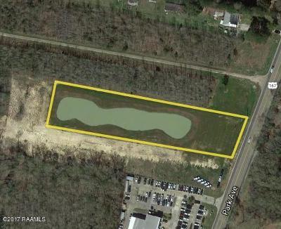 Commercial Lots & Land For Sale: 1207 Park Avenue