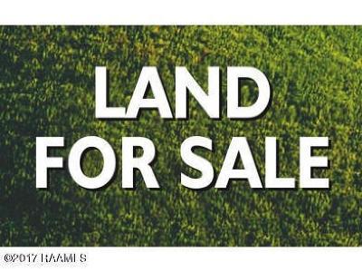 St Landry Parish Residential Lots & Land For Sale: 872 Hiram Street