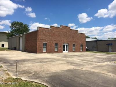 New Iberia Commercial For Sale: 1215 Import Drive