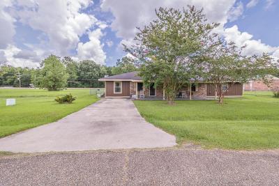 Sunset Single Family Home For Sale: 132 Willow Glen