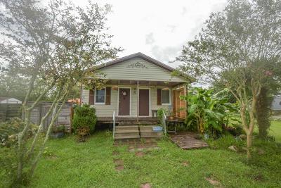 Duson Single Family Home For Sale: 225 Reggie Road