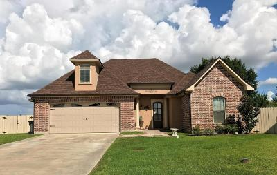 Meadow Bend Single Family Home For Sale: 100 Claystone