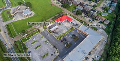 Lafayette Commercial For Sale: 201 W Gloria Switch Road