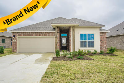 Verot Park Single Family Home For Sale: 207 Amaya Avenue