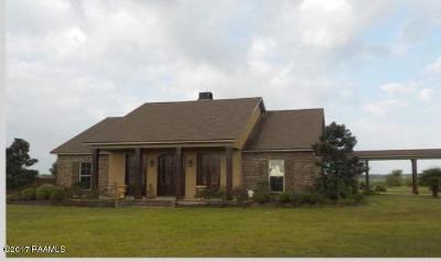 Eunice Single Family Home For Sale: 1115 Chinaberry Drive